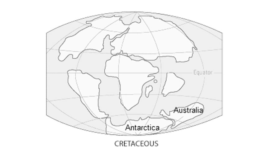 blog-y11-biology-practice-paper-q-12-australia-antarctica