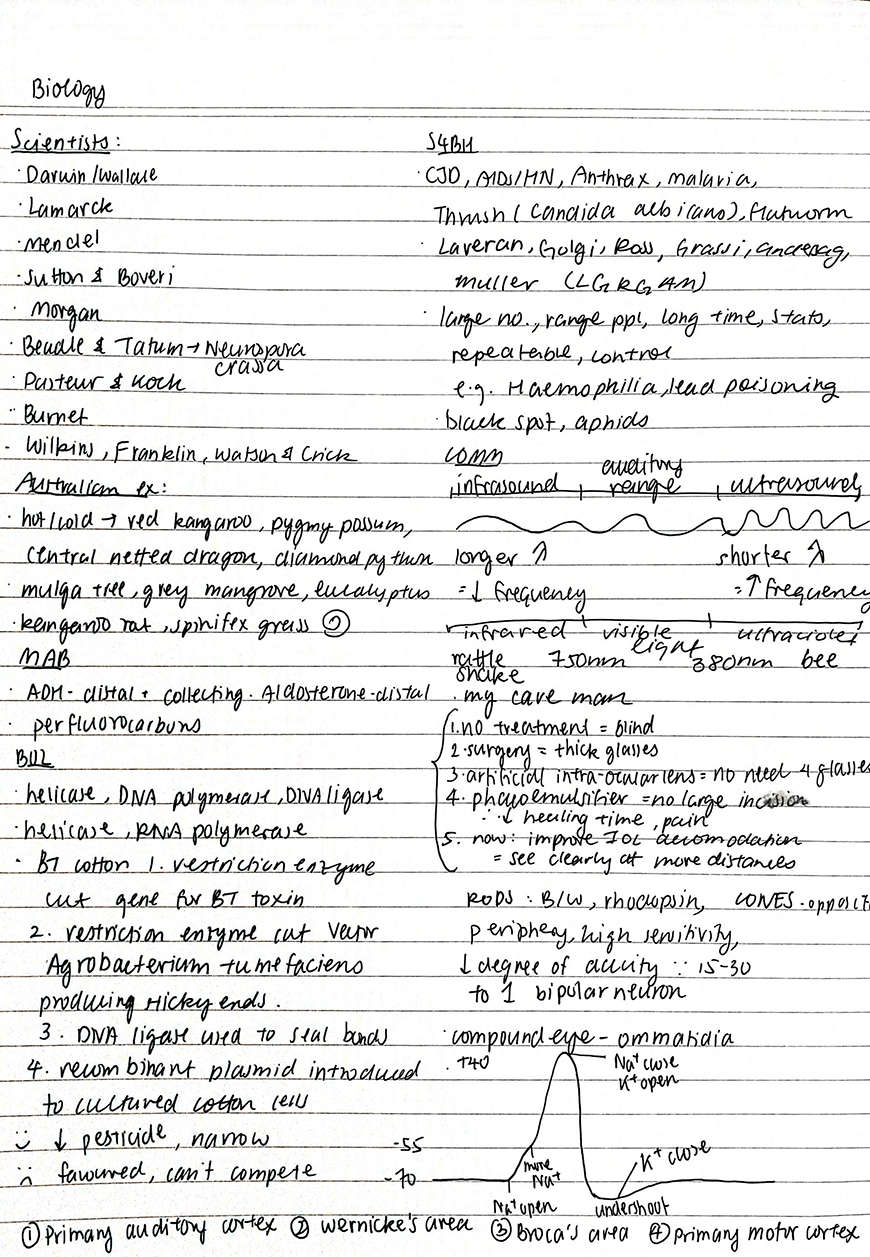 iris-top-8-study-hacks-scoring-99-5-atar-my-biology-summary-notes