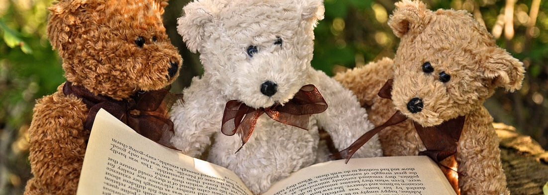 beginners-guide-year-7-8-english-year-7-8-reading-skills-teddy-bears-banner
