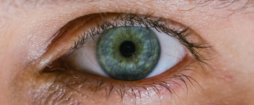english-guide-year-9-how-to-analyse-images-and-visual-texts-march-extreme-close-up-of-eye