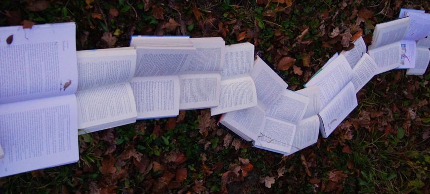 english-guide-year-10-How-to-compose-a row of books on the ground twisting like a pathenglish-responses-in-year-10