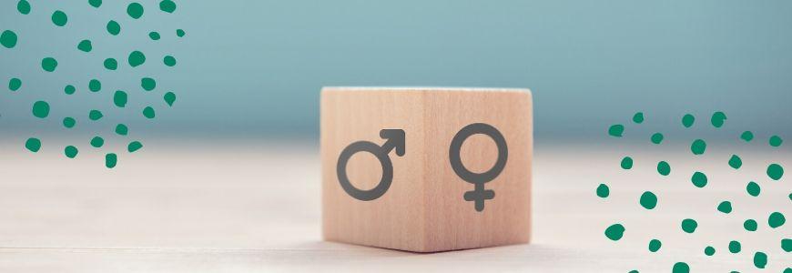 12 English blog emma analysis gender