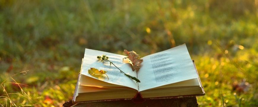 blog-english-std--mod-a-ultimate-contemporary-asian-australian-poets-cheatsheet-poets